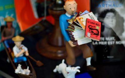 Tintin et le Lotus Bleu Record à 3,2 M € !