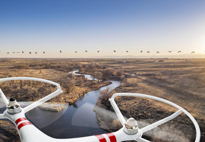 Drone Racer pour le cinéma